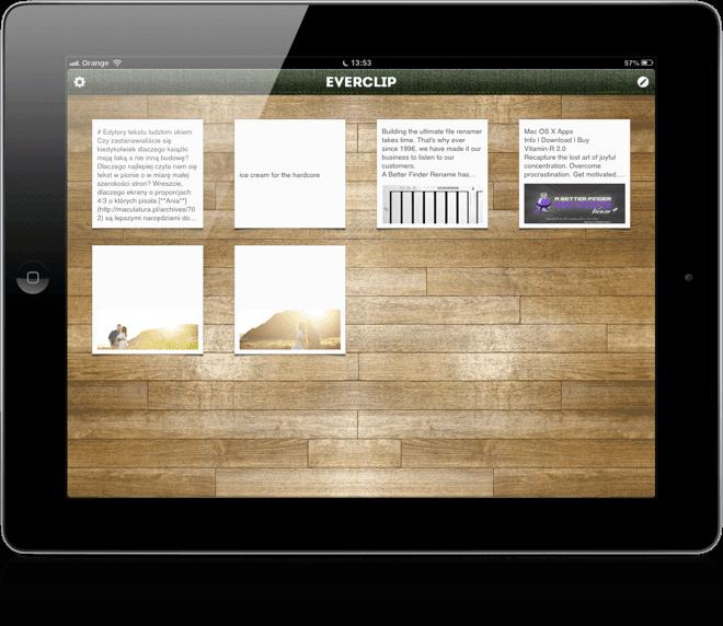 EverClip pro iPad